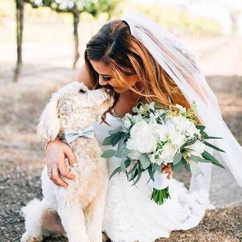 http://www.decouture-dogresort.it/wp-content/uploads/2017/08/dogwedding1-500x500.jpg